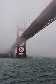 One fog obscured bridge!