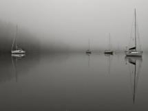 Morning fog in Bottleneck Inlet