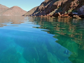 Water so clear you can snorkel from the kayaks..ha!