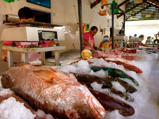 More fresh pescado!