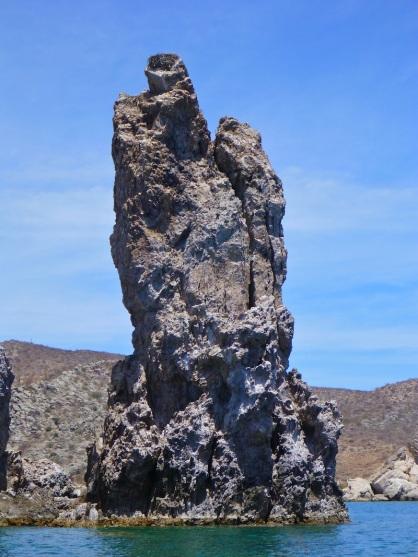 Osprey nest on the pinnacle!