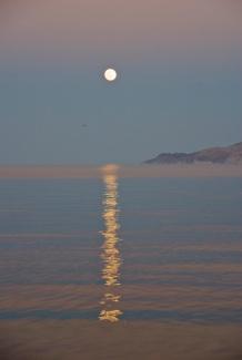Ahhh, the full moon rising