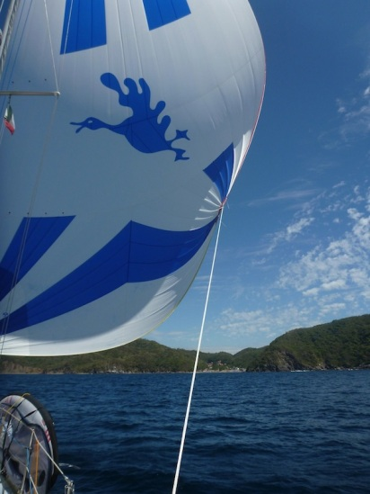 Sailing the goose (not beating to windward for once!)