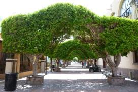 Loreto market street