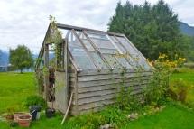 I miss my garden!