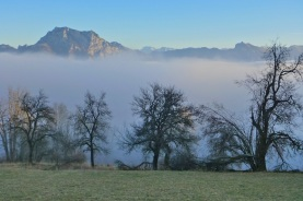 Above the clouds on the Traunstein