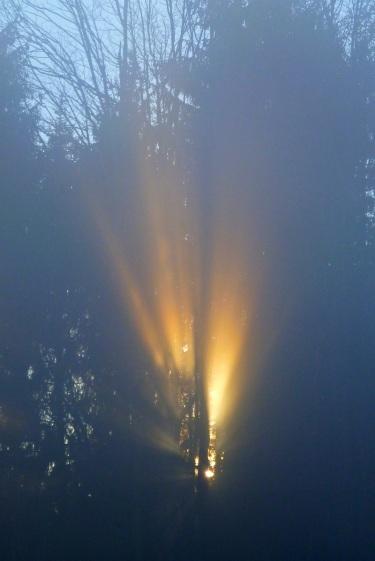 Sunlight through fog