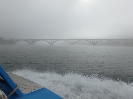 Morning fog hides the bridge
