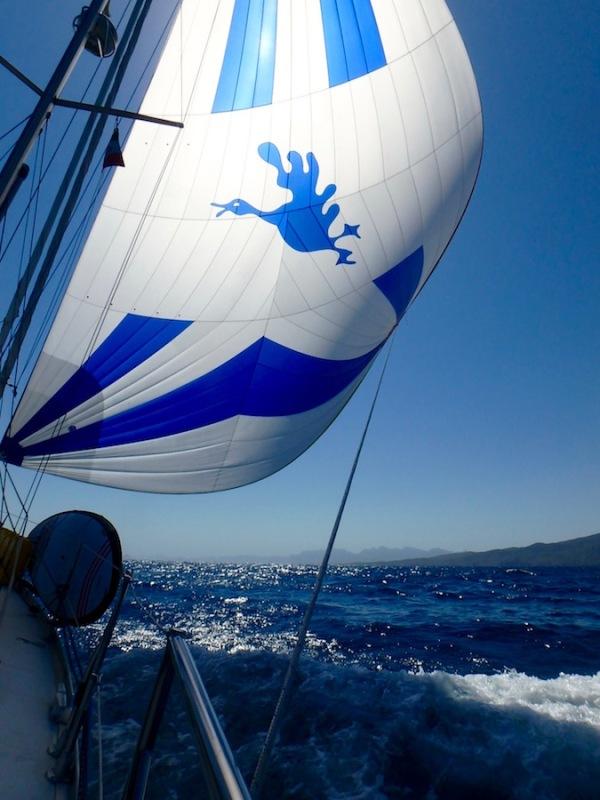 Gennaker run from Bahia San Juanico to Isla Coronados