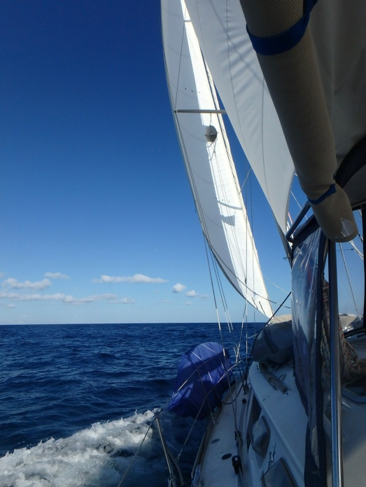 A great day for a sail!