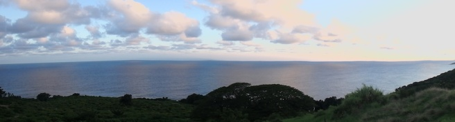 The view from our Hana cottage
