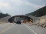 Building another wildlife crossing - love these!