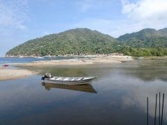 Panga in the river