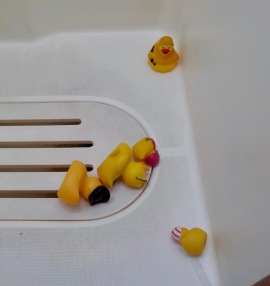 Five ducks down...!