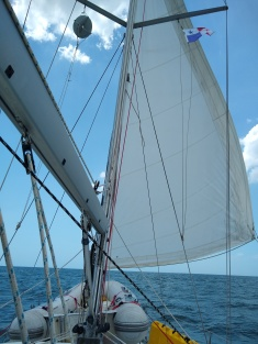 Finally! Sailing in a brisk wind.